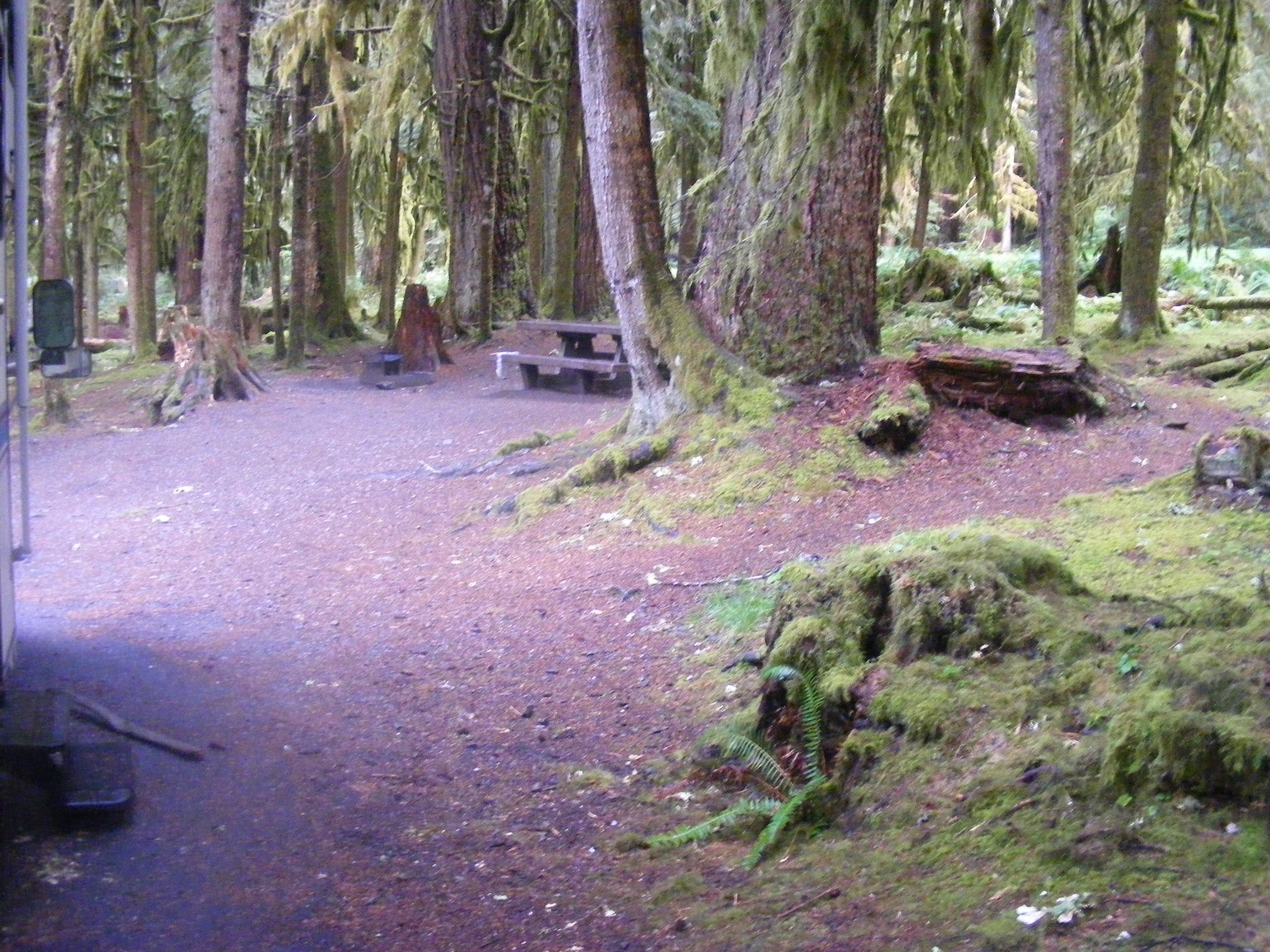 Sol Duc Campground Loop A Olympic National Park