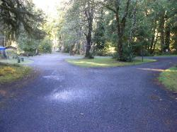 Driving Loop A Hoh Rain Forest Campground Olympic