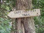 The beginning of Cape flattery trail