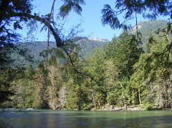 River Loop Trail - Newhalem CG North Cascades NP