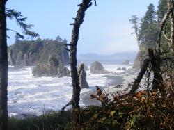 Ruby Beach - Olympic National Park