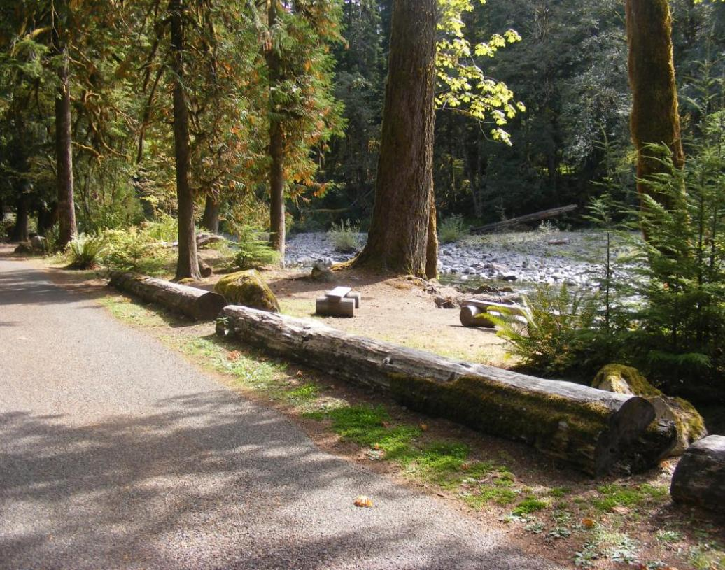 Staircase Campground Wash Out Sites  - Olympic National Park