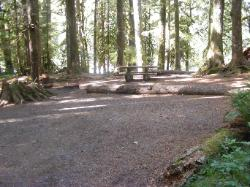Staircase Campground Site 02 - Olympic National Park