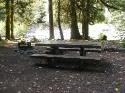 Staircase Campground Site 04 - Olympic National Park