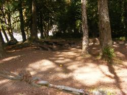 Staircase Campground Site 05 - Olympic National Park