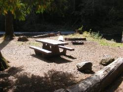 Staircase Campground Site 06 - Olympic National Park