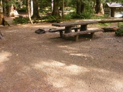 Staircase Campground Site 09 - Olympic National Park