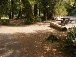 Staircase Campground Site 10 - Olympic National Park