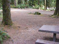 Staircase Campground Site 17 - Olympic National Park