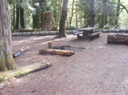 Staircase Campground Site  20 - Olympic National Park