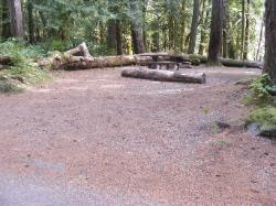 Staircase Campground Site  21 - Olympic National Park
