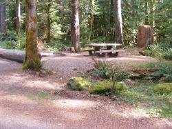 Staircase Campground Site  22 - Olympic National Park