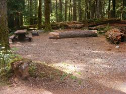 Staircase Campground Site  23 - Olympic National Park