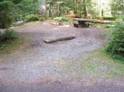 Staircase Campground Site  25 - Olympic National Park
