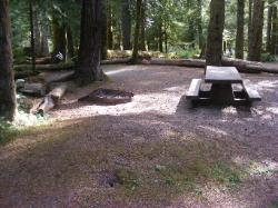 Staircase Campground Site  26 - Olympic National Park