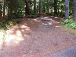 Staircase Campground Site  27 - Olympic National Park