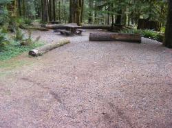 Staircase Campground Site  29 - Olympic National Park