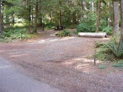 Staircase Campground Site  31 - Olympic National Park