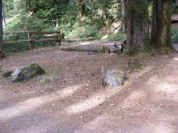 Staircase Campground Site  42 - Olympic National Park