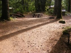 Staircase Campground Site  44 - Olympic National Park