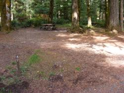 Staircase Campground Site  47 - Olympic National Park