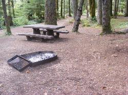 Staircase Campground Site  49 - Olympic National Park