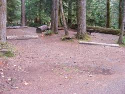Staircase Campground Site  48 - Olympic National Park