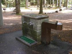 Staircase Campground Water  - Olympic National Park