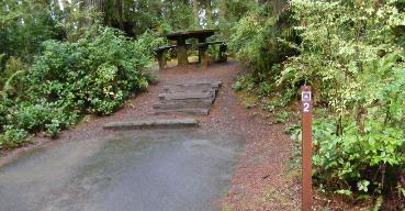 Willaby Campground Olympic National Park Site 02