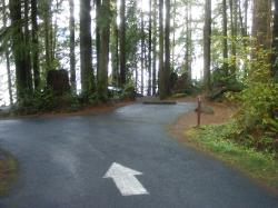 Willaby Campground Olympic National Park Site 04