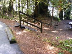 Willaby Campground Olympic National Park Site 07